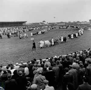Great Yorkshire Show, 1965